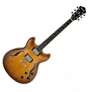 chitarra semiacustica professionale