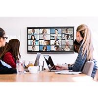 Sistemi Videoconferenza